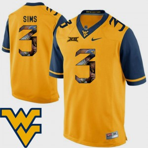 For Men's Mountaineers #3 Charles Sims Gold Pictorial Fashion Football Jersey 225330-293