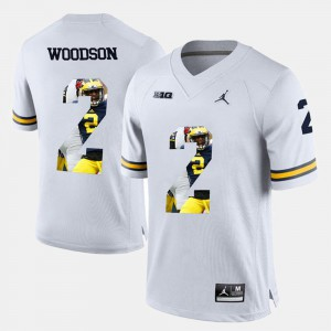 Men's Michigan #2 Charles Woodson White Player Pictorial Jersey 994494-710