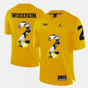 For Men's Michigan Wolverines #2 Charles Woodson Yellow Player Pictorial Jersey 200671-270